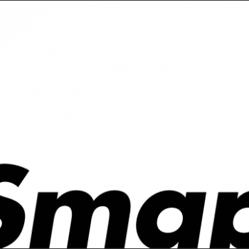 Smap 25 years
